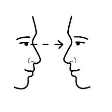 contact vizual
